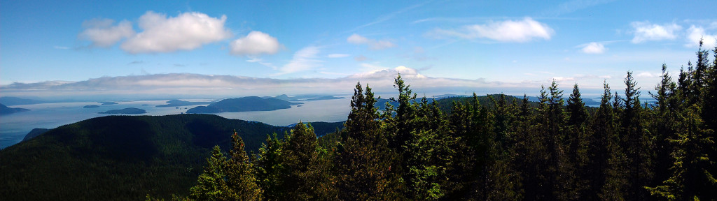 View from the top of mount constitution